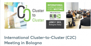 International Cluster To Cluster Meeting Bologna